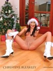 Christine Bleakley Nude Fakes - 001