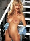 courtney-thorne-smith-fakes-002