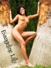 Evangeline Lilly Nude Fakes - 023