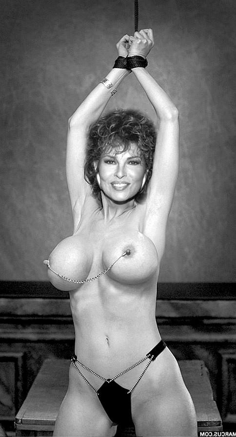 Raquel Welch Nude Fakes