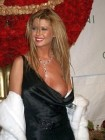 Tara Reid Dress Nipple Slip