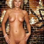 Malin Akerman Nude Fakes